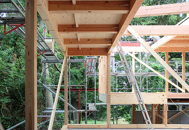 Eureka | Eagle Woods House_Construcion